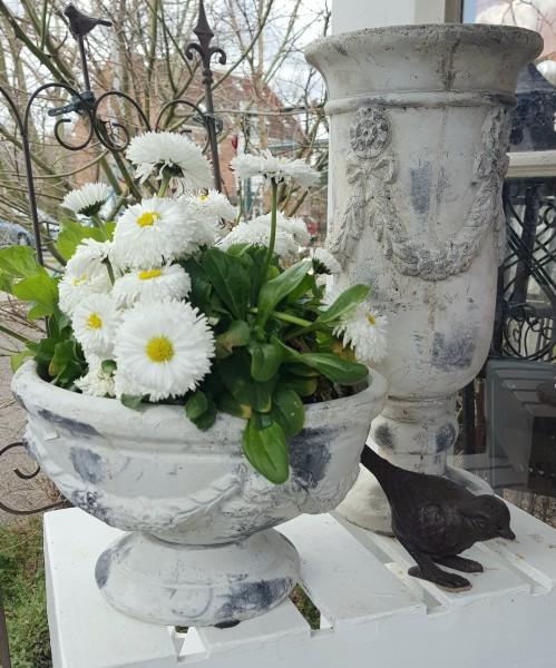 Pokal Amphore Pflanzschale Beige Garten Sabby Vintage Landhaus Flach Deko