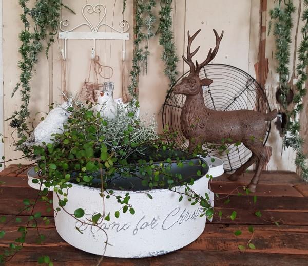 Pflanzschale Schale Zink Weiß Weihnachten Landhaus Vintage Deko