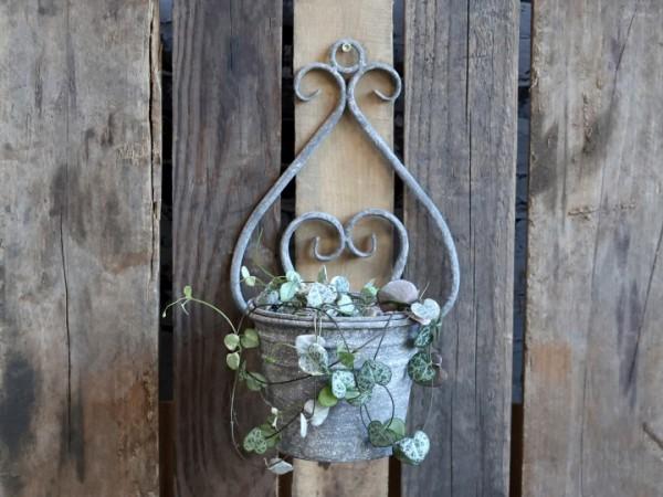 Wandkasten Topf Pflanzkasten Metall Grau Garten Shabby Vintage Landhaus Deko