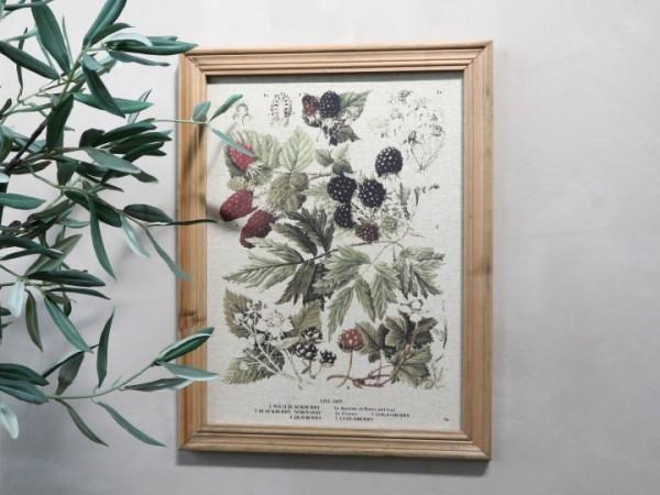 Bild Pflanzenmotiv Rahmen Antik Natur Shabby Vintage Landhaus Wandbild Deko