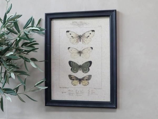 Bild Schmetterlinge Rahmen Antik Kohle Shabby Vintage Landhaus Wandbild Nr. 2