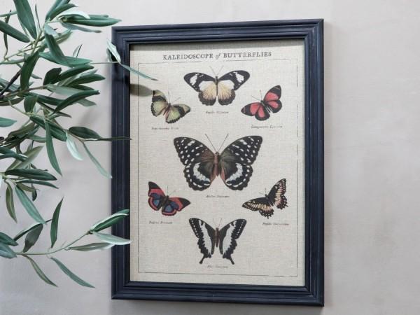 Bild Schmetterlinge Rahmen Antik Kohle Shabby Vintage Landhaus Wandbild Deko