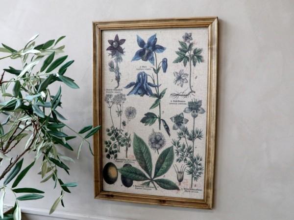 Bild Pflanzenmotiv Rahmen Antik Natur Shabby Vintage Landhaus Wandbild Deko Groß